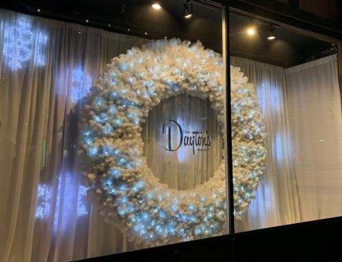 11/22/19 WCCO News Dayton's Window Displays